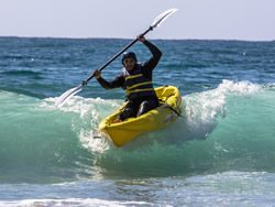 Everyday California Guided Kayak Tours of the La Jolla Ecological Preserve